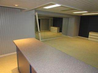 Photo 27: 91 SHULTZ Crescent: Rural Sturgeon County House for sale : MLS®# E4175419