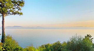 Photo 12: 12850 13 Avenue in Surrey: Crescent Bch Ocean Pk. House for sale (South Surrey White Rock)  : MLS®# R2432932