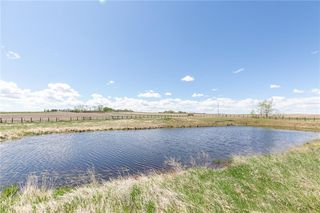 Photo 42: 281206 RGE RD 13 in Rural Rocky View County: Rural Rocky View MD Detached for sale : MLS®# C4299346