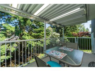 Photo 16: 3728 SQUAMISH CRESCENT in Abbotsford: Central Abbotsford House for sale : MLS®# R2460054