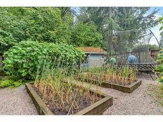 Photo 39: 9116 CRICKMER Court in Langley: Fort Langley House for sale : MLS®# R2483314