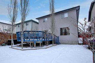 Photo 30: 206 Citadel Estates Heights NW in Calgary: Citadel Detached for sale : MLS®# A1050417