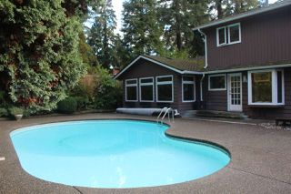 Photo 38: 13719 56A Avenue in Surrey: Panorama Ridge House for sale : MLS®# R2522442
