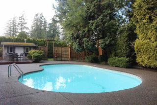 Photo 39: 13719 56A Avenue in Surrey: Panorama Ridge House for sale : MLS®# R2522442