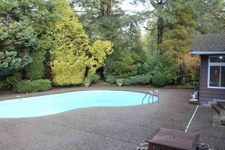 Photo 35: 13719 56A Avenue in Surrey: Panorama Ridge House for sale : MLS®# R2522442