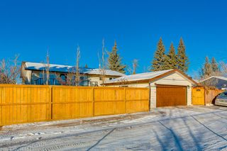 Photo 42: 1072 Acadia Drive SE in Calgary: Lake Bonavista Detached for sale : MLS®# A1058611