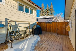 Photo 45: 1072 Acadia Drive SE in Calgary: Lake Bonavista Detached for sale : MLS®# A1058611