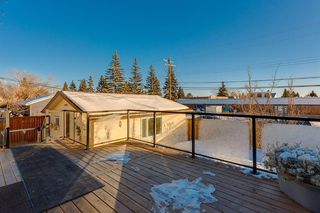 Photo 49: 1072 Acadia Drive SE in Calgary: Lake Bonavista Detached for sale : MLS®# A1058611