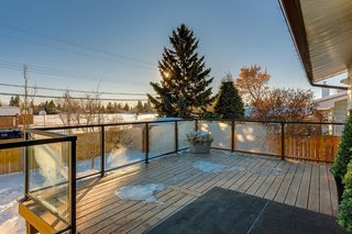 Photo 48: 1072 Acadia Drive SE in Calgary: Lake Bonavista Detached for sale : MLS®# A1058611