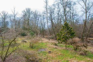 Photo 39: 25323 20 Avenue in Langley: Otter District House for sale : MLS®# R2527525