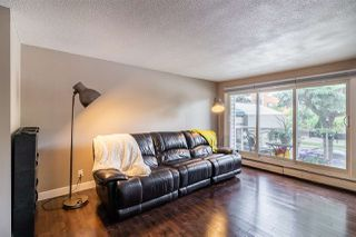 Photo 3: 201 9725 82 Avenue in Edmonton: Zone 17 Condo for sale : MLS®# E4173900