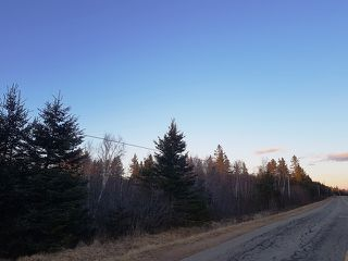 Photo 4: LOT MCNALLY Road in Victoria Harbour: 404-Kings County Vacant Land for sale (Annapolis Valley)  : MLS®# 201923444