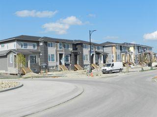 Photo 11: 1016 Lanark Boulevard SE: Airdrie Row/Townhouse for sale : MLS®# A1019250
