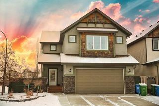 Main Photo: 20 Copperleaf Park SE in Calgary: Copperfield Detached for sale : MLS®# A1051809