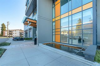 Photo 4: 2301 7303 NOBLE LANE in Burnaby: Edmonds BE Condo for sale (Burnaby East)  : MLS®# R2518163