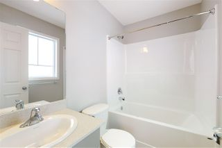 Photo 29: 3092 CHECKNITA Way SW in Edmonton: Zone 55 House for sale : MLS®# E4186888