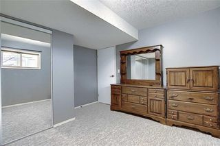 Photo 33: 16 GREENVIEW Crescent: Strathmore Detached for sale : MLS®# C4303060