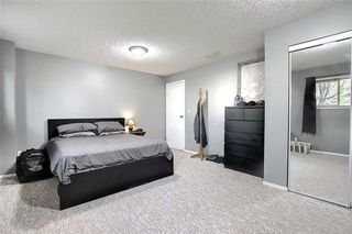 Photo 30: 16 GREENVIEW Crescent: Strathmore Detached for sale : MLS®# C4303060
