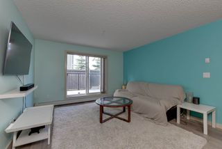 Photo 6: 132 6076 SCHONSEE Way in Edmonton: Zone 28 Condo for sale : MLS®# E4215435