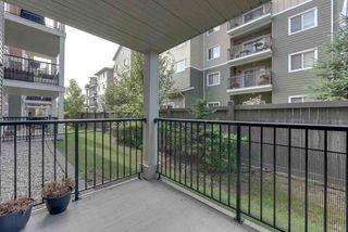 Photo 16: 132 6076 SCHONSEE Way in Edmonton: Zone 28 Condo for sale : MLS®# E4215435