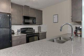 Photo 4: 132 6076 SCHONSEE Way in Edmonton: Zone 28 Condo for sale : MLS®# E4215435