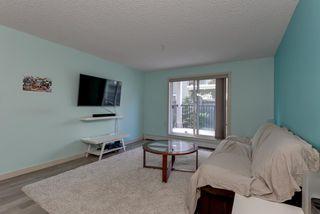 Photo 5: 132 6076 SCHONSEE Way in Edmonton: Zone 28 Condo for sale : MLS®# E4215435