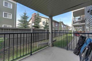 Photo 15: 132 6076 SCHONSEE Way in Edmonton: Zone 28 Condo for sale : MLS®# E4215435