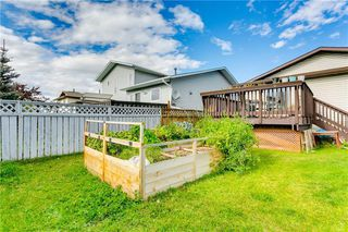 Photo 31: 103 WHITERAM Close NE in Calgary: Whitehorn Detached for sale : MLS®# C4268249