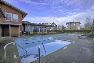 "Photo 18: 13 2310 RANGER Lane in Port Coquitlam: Riverwood Townhouse for sale in ""FREMONT BLUE"" : MLS®# R2433236"
