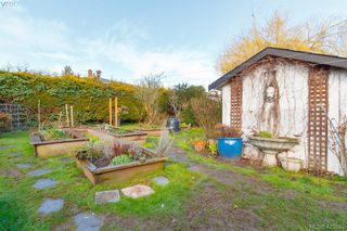 Photo 19: 3316 Whittier Ave in VICTORIA: SW Rudd Park House for sale (Saanich West)  : MLS®# 834896