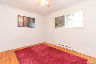 Photo 12: 3316 Whittier Ave in VICTORIA: SW Rudd Park House for sale (Saanich West)  : MLS®# 834896