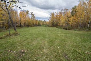 Photo 12: 280 51268 RANGE ROAD 204: Rural Strathcona County House for sale : MLS®# E4192739