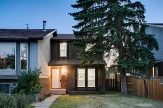 Main Photo: 413 TEMPLEVIEW Drive NE in Calgary: Temple Semi Detached for sale : MLS®# A1020298