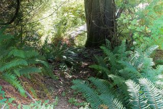 Photo 2: 31-185 Grantville St in : GI Salt Spring Land for sale (Gulf Islands)  : MLS®# 851731