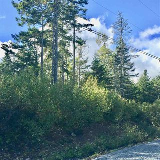 Photo 2: Lot 5 Ocean Stone Drive in Garden Lots: 405-Lunenburg County Vacant Land for sale (South Shore)  : MLS®# 202021174