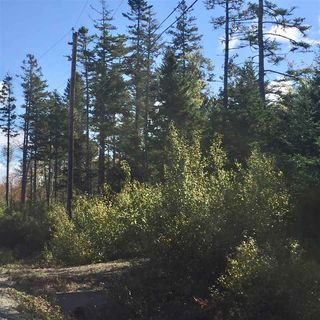 Photo 4: Lot 5 Ocean Stone Drive in Garden Lots: 405-Lunenburg County Vacant Land for sale (South Shore)  : MLS®# 202021174