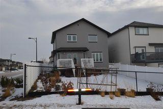 Photo 36: 17128 121 Street in Edmonton: Zone 27 House for sale : MLS®# E4224831