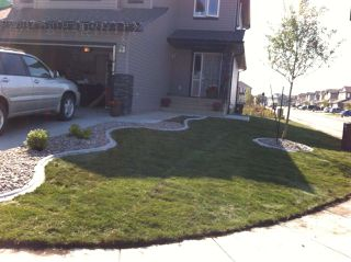 Photo 45: 17128 121 Street in Edmonton: Zone 27 House for sale : MLS®# E4224831