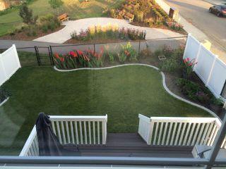 Photo 46: 17128 121 Street in Edmonton: Zone 27 House for sale : MLS®# E4224831