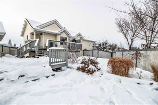 Photo 29: 7803 14 Avenue in Edmonton: Zone 53 House for sale : MLS®# E4185969