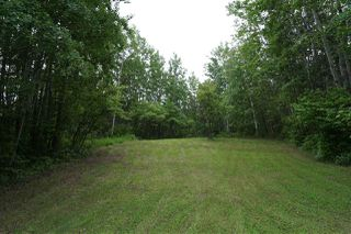 Photo 14: 39 54126 RR30: Rural Lac Ste. Anne County House for sale : MLS®# E4204394