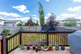 Photo 40: 20615 50 Avenue in Edmonton: Zone 58 House for sale : MLS®# E4209603