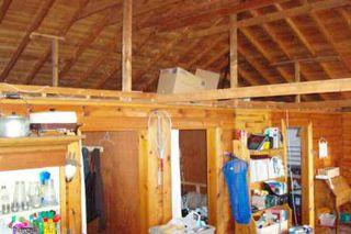 Photo 8: 56 Iris Drive in Kawartha L: House (Bungalow) for sale (X22: ARGYLE)  : MLS®# X1145801