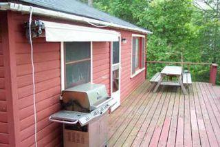 Photo 3: 56 Iris Drive in Kawartha L: House (Bungalow) for sale (X22: ARGYLE)  : MLS®# X1145801