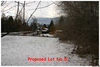 Photo 5: 2450 NE 21 Street in Salmon Arm: Pheasant Heights Residential Detached for sale : MLS®# 10039136