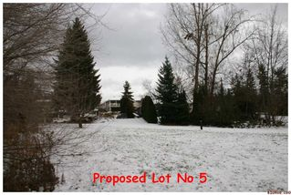 Photo 7: 2450 NE 21 Street in Salmon Arm: Pheasant Heights Residential Detached for sale : MLS®# 10039136
