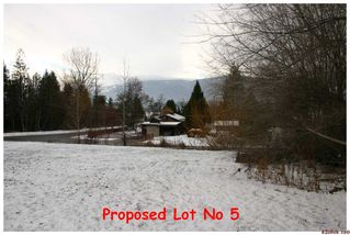 Photo 6: 2450 NE 21 Street in Salmon Arm: Pheasant Heights Residential Detached for sale : MLS®# 10039136