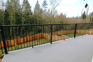"Photo 13: 24154 MCCLURE Drive in Maple_Ridge: Albion House for sale in ""MAPLE CREST"" (Maple Ridge)  : MLS®# V632433"
