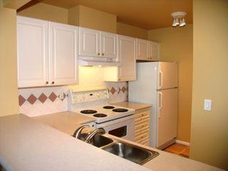 Photo 2: #409 1369 56TH Street in Delta: Condo for sale (Tsawwassen)  : MLS®# V770549