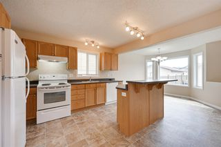 Photo 8: 17708 89 Street in Edmonton: Zone 28 House for sale : MLS®# E4174508
